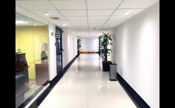 Torre Lexus Oficina / Renta